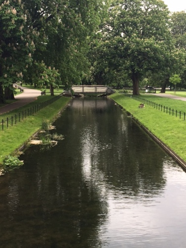 Canal in the park