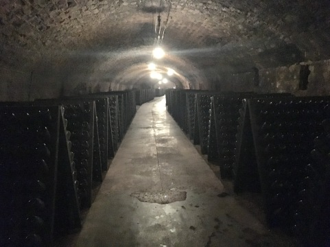 Caves St. Martin wine cellar